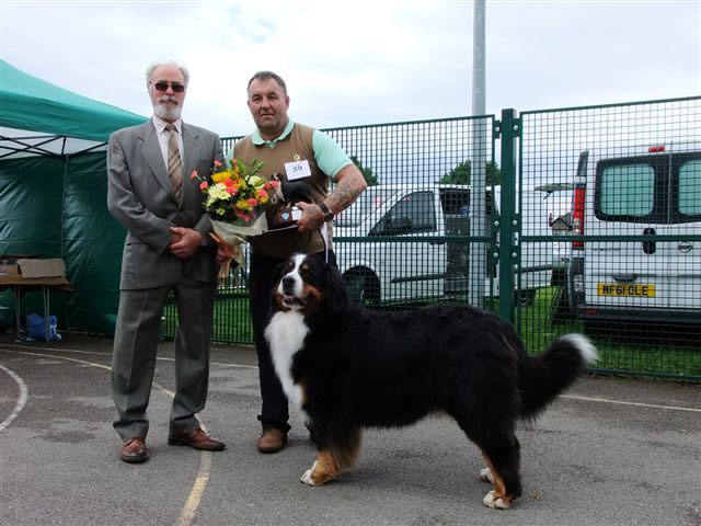 The Special Champion Award Class Winner Tony Harrington with Mike Bramble & CH Shirdees Bobbie Dazzler